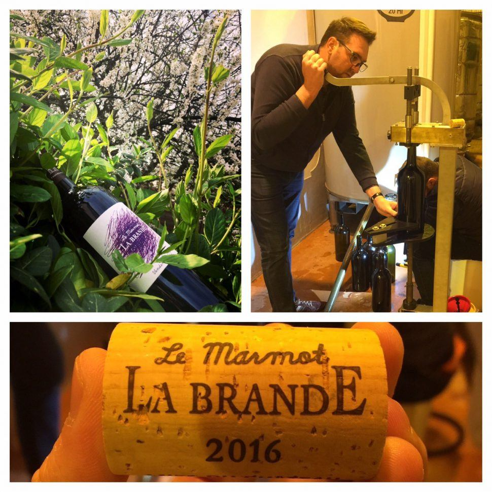 Le Marmot de La Brande 2016 sera prêt le 1er Avril 2017 !