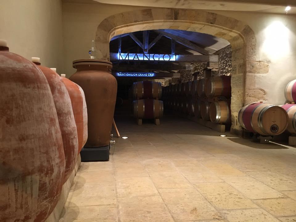 Des amphores au Château Mangot !