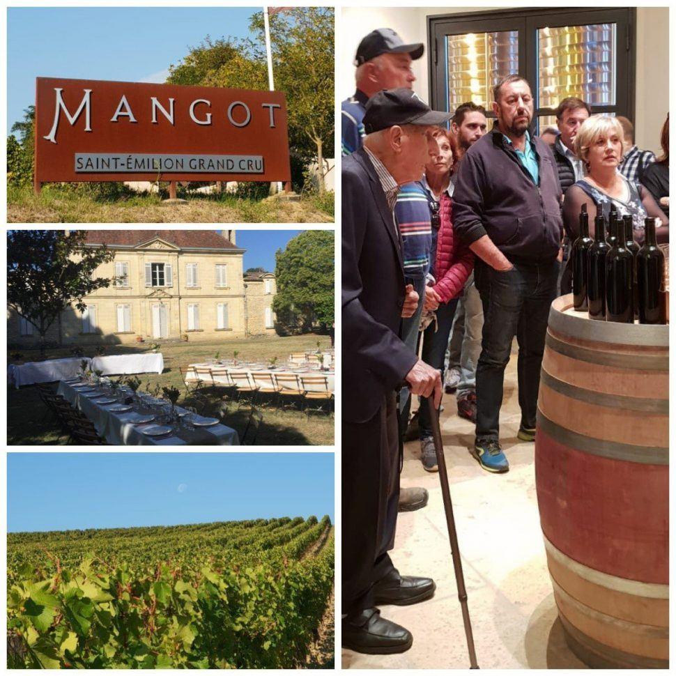 Retour sur notre Journée Vendanges à Château Mangot