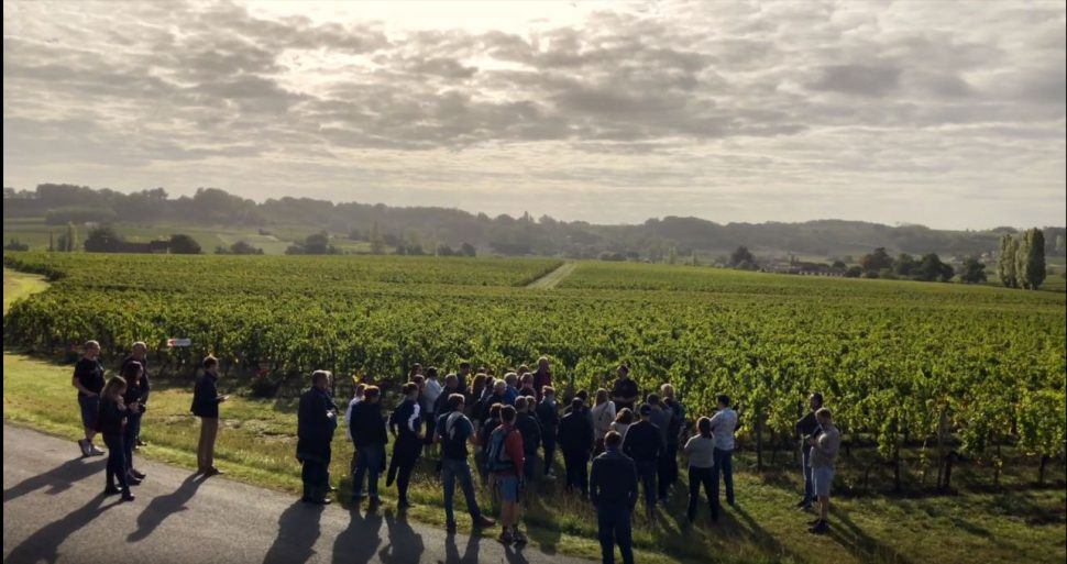 Journée vendanges – 28 Septembre 2019
