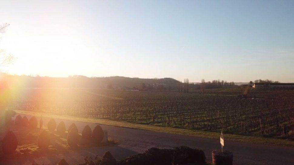 Soleil d'hiver sur les terroirs de Mangot…
