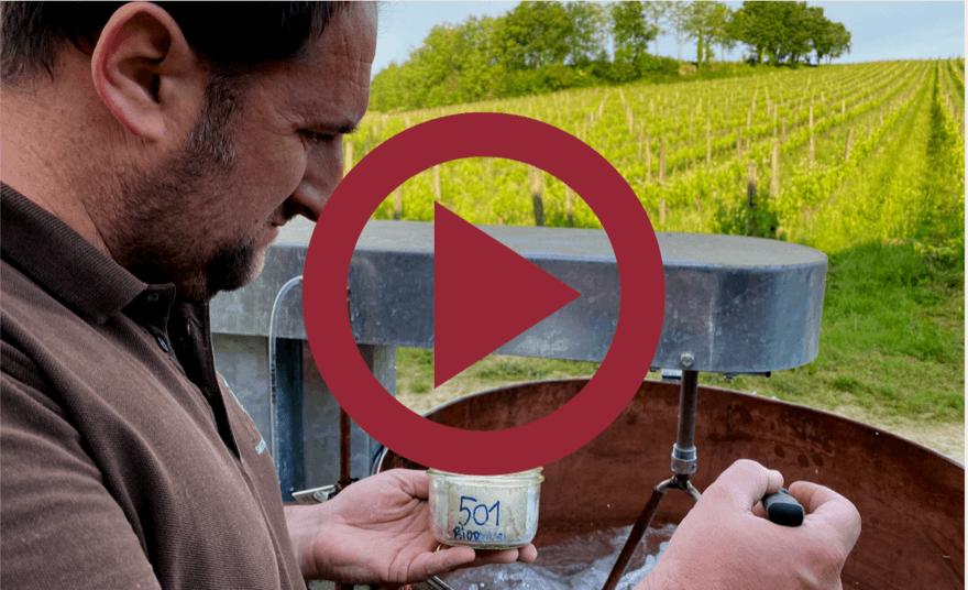 Découvrez en vidéo notre engagement écologique ! 🌱